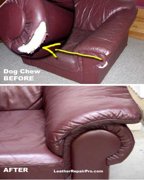 How To Repair Leather Dog Chew Holes Tears
